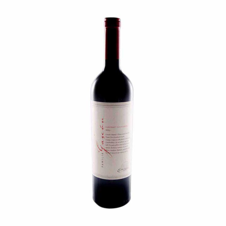 Vino-Familia-Gascon-Cabernet-X-750cc-1-13746