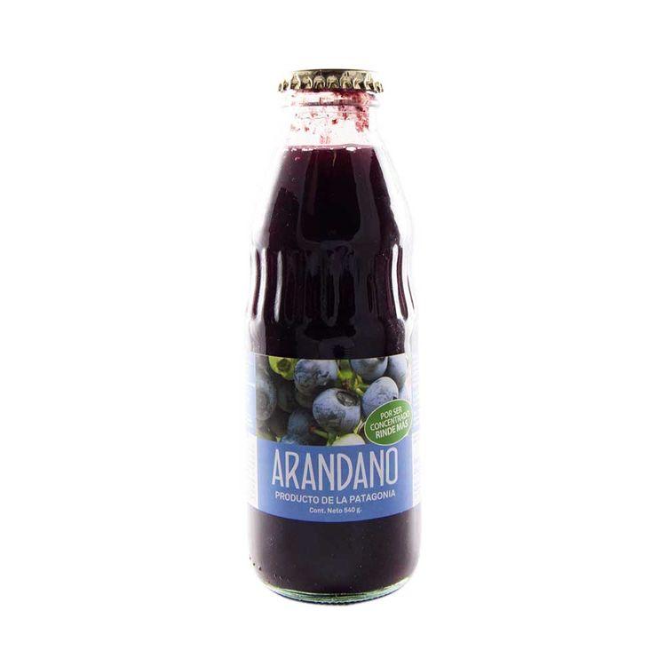 Salsa-Frutas-Del-Sur-Arandano-Bot-540gr-Salsa-Frutas-Del-Sur-Arandano-540-Gr-1-18438