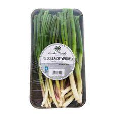 Cebolla-De-Verdeo-Sueño-Verde-Cebolla-De-Verdeo-Sueño-Verde---Bja-250-Gr-1-23062