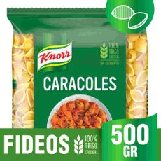 Fideos-De-Semola-Knorr-De-Trigo-Candeal-Caracoles-X500g-Fideos-De-Semola-Knorr-Trigo-Candeal-500-Gr-1-25553