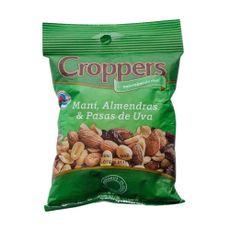 Croppers---Mix-De-Mani-Alm-Y-Pasas-100-Gr-Mix-De-ManI-Almendras-Y-Pasas-De-Uva-Croppers-100-Gr-1-42156