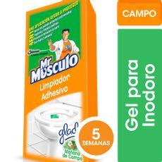 Limpiador-Adhesivo-Mr-Musculo-Mañana-De-Campo-3u-X-30gr-1-233377