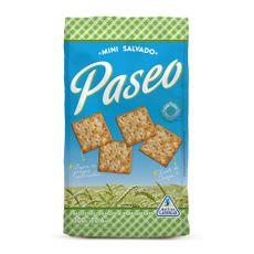 Galletitas-De-Agua-Mini-Crackers-Paseo-Mix-De-Cereales-300-Gr-1-9986