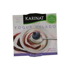 Yogur-Helado-Karinat-Arandano-120-Gr-1-256244