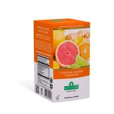 Te-Saint-Gottard-Citrus-Mix-Jengibre-Y-Miel-1-263385