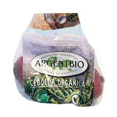 Cebolla-Roja-Organica-Fracc-1-299260