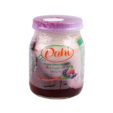 Yogurt-Descremado-Dahi-Con-Colchon-De-Frutos-Del-Bosque-200-Gr-1-14223