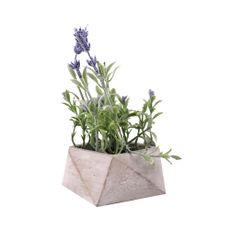 Flor-En-Maceta-De-Cemento-Lavanda-1-572982