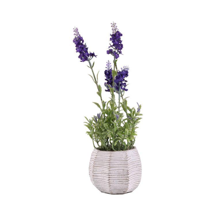 Flor-En-Maceta-De-Cemento-Lavanda-1-573005