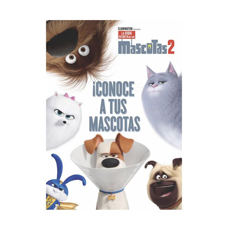 Activity-4-En-1-mascotas-2-vertice-1-693384