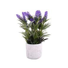 Flor-En-Maceta-Cemento-Lavanda-1-574049