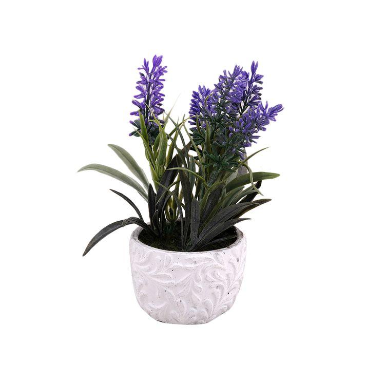 Flor-En-Maceta-Labrada-1-574053