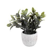 Planta-En-Maceta-Cemento-Rayado-1-574179