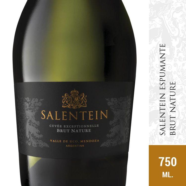 Vino-Espumante-Salentein-Brut-Nature-750-Ml-1-19201