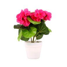 Flor-Mini-En-Maceta-23cm-1-606964