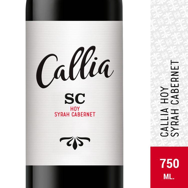 Vino-Calia-Syrah-Cabernet-Sauvignon-750-Ml-1-19367