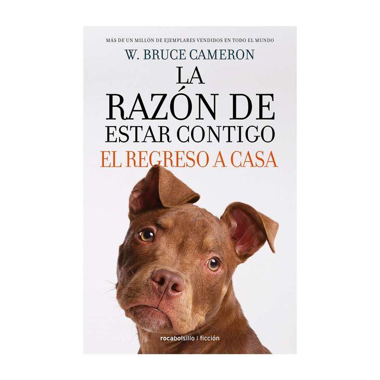 Regreso-A-Casa--Razon-De-Estar-Contigo-1-840027