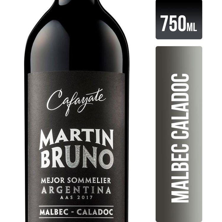 Vino-Cafayate-Martin-Bruno-Malbec-Caladoc-750-Ml-1-842063