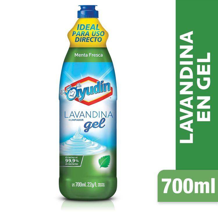 Lavandina-En-Gel-Ayudin-Control-Menta-700-Ml-1-5170