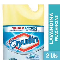 Lavandina-Ayudin-Multisuperficies-Pureza-De-Glaciar-2-L-1-17381
