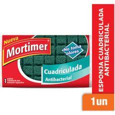 Esponja-Cuadriculada-Mortimer-Antibacterial-1-U-1-30369