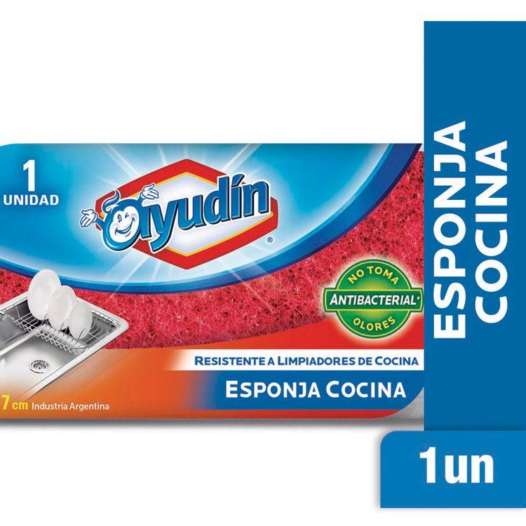 Esponja-Ayudin-Cocina-1-38633