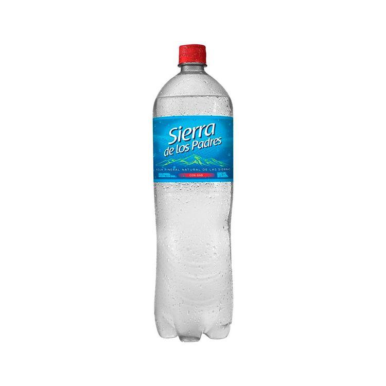 Agua-Sierra-De-Los-Padres-Sin-Gas-15lt-1-843751
