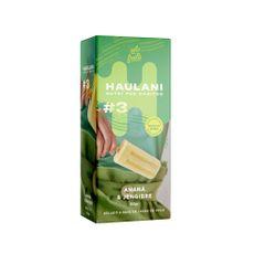 Paleta-Haulani-Anana-Y-Jengibre-240-Gr---3-U-X-80-Gr-1-845921