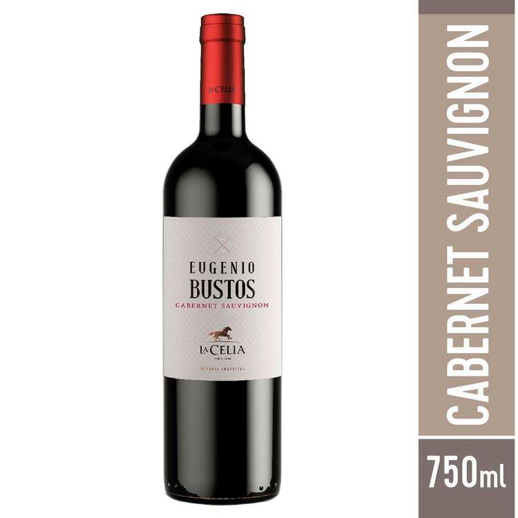 Vino-Eugenio-Bustos-Cabernet-Sauvignon-Botella-750-Cc-1-37129
