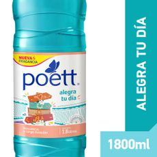 Poett-Alegra-Tu-Dia-1-848197
