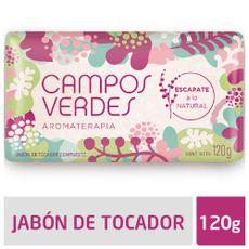 Jabon-Campos-Verdes-Lluvia-De-Verano-120-Gr-1-5502