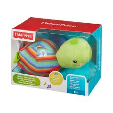 Tortuga-Musical-Fisher-Price-1-850345