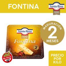 Queso-Fontina-Santa-Rosa-Trozado-X-Kg-1-798654