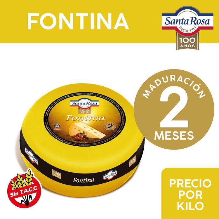 Queso-Fontina-Santa-Rosa-Hma-X-Kg-1-799525