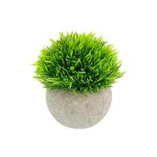Planta-En-Maceta-Esfera-Pasto-12cm-1-854057