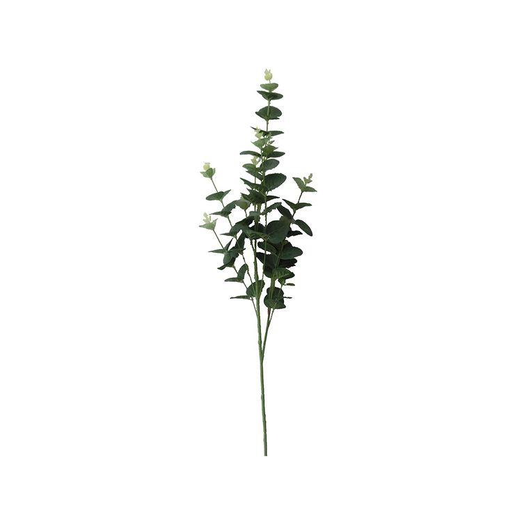 Follaje-Eucalipto-92-Cm-Pv18-1-572742