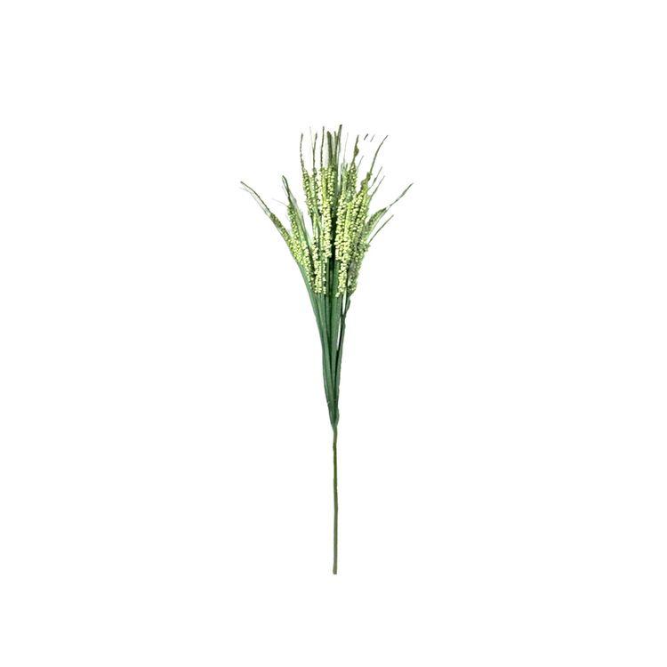 Pasto-Frutado-90-Cms-Pv18-X-1u-1-572826