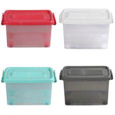 Caja-Org-25lt-C-rued-Color-Trans-4c-Aa-P-1-851114
