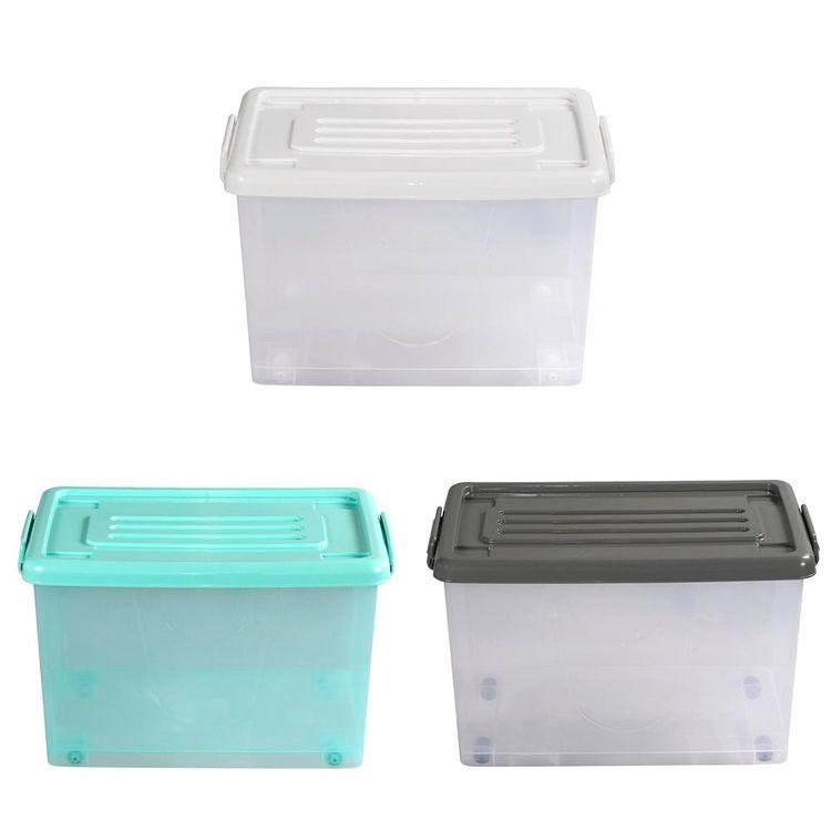 Caja-Org-50lt-C-rued-Color-Trans-3c-Tt-P-1-851119