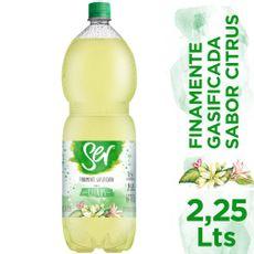 Agus-Mineral-Con-Gas-Ser-Citrus-2-25-L-1-241113