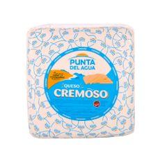 Queso-Cremoso-Punta-Del-Agua-Horma-X-Kg-1-175906
